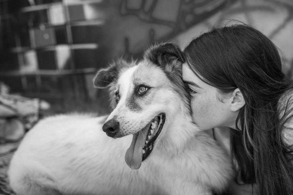 אוכל בריא לכלבים - תזונה בריאה לחיים ארוכים - סולמייט