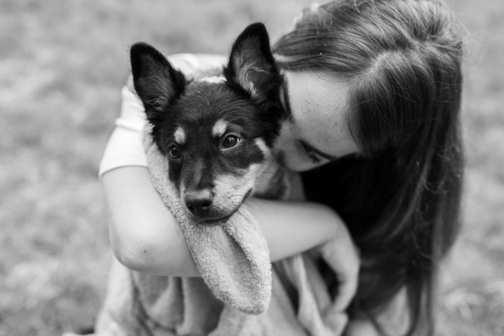 מזון לגורים - איזה אוכל כדאי לתת לגור הכלבים שלך ובאיזה תדירות